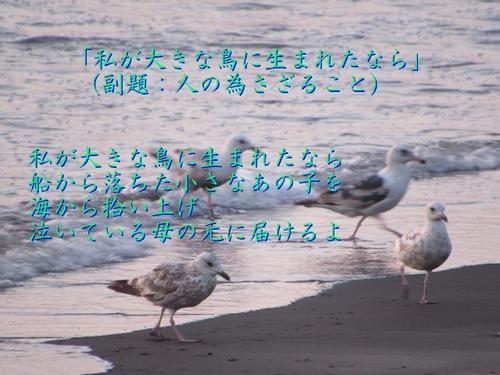 私が鳥に生まれたならば-1 (640x480).jpg